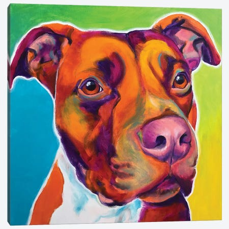 Red The Pit Bull Canvas Print #DWG182} by DawgArt Canvas Print