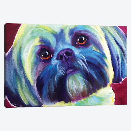 Sadie The Lhasa Apso Canvas Print #DWG184} by DawgArt Canvas Artwork