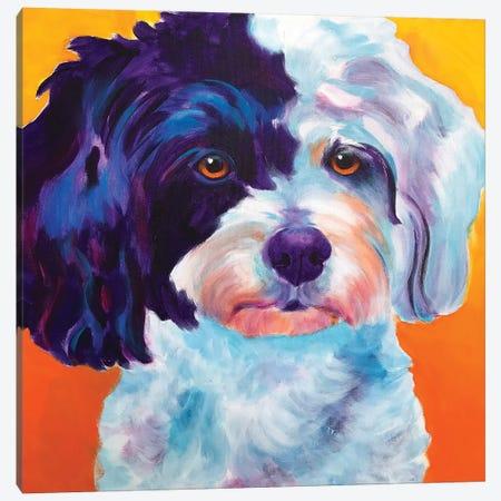 Teddy Bear Dog 3-Piece Canvas #DWG189} by DawgArt Canvas Print