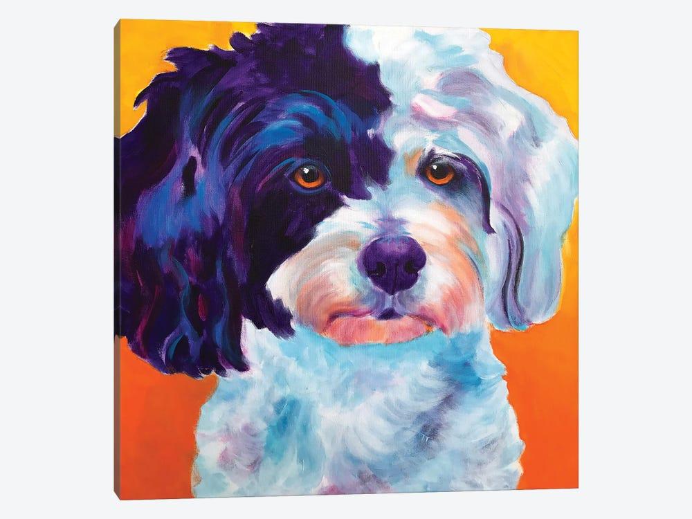 Teddy Bear Dog by DawgArt 1-piece Canvas Print