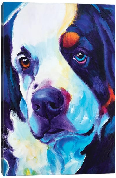 Zeke The Bernese Mountain Dog I Canvas Art Print