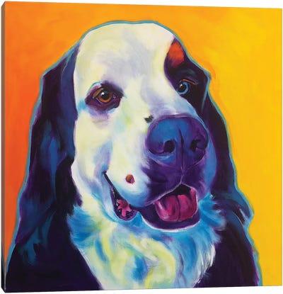Zeke The Bernese Mountain Dog II Canvas Art Print