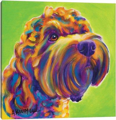 Benny the Cockapoo Canvas Art Print
