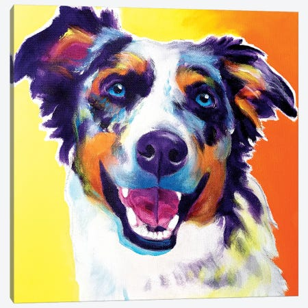Storm The Aussie  Canvas Print #DWG201} by DawgArt Canvas Wall Art