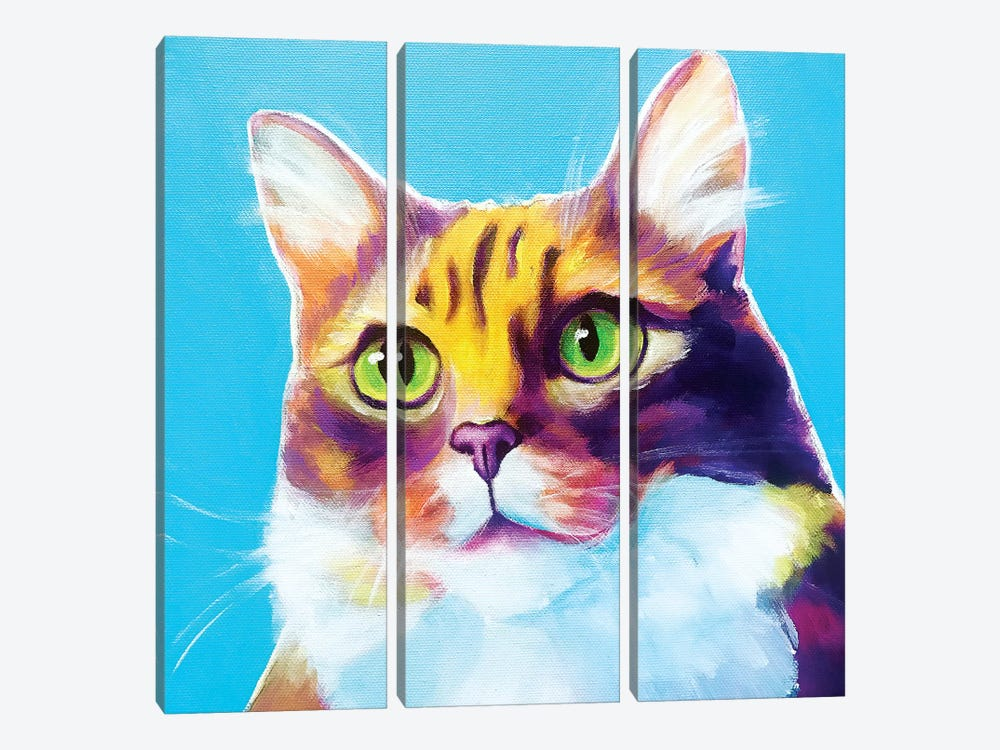Willow The Cat by DawgArt 3-piece Canvas Wall Art