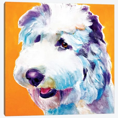 Boogie The Doodle Canvas Print #DWG207} by DawgArt Canvas Print