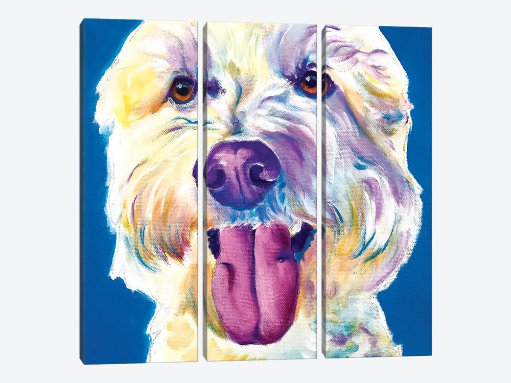 Hank The Doodle by DawgArt 3-piece Canvas Wall Art