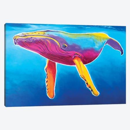 Rainbow Humpback Whale Canvas Print #DWG212} by DawgArt Art Print