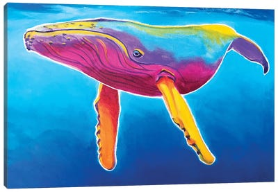 Rainbow Humpback Whale Canvas Art Print
