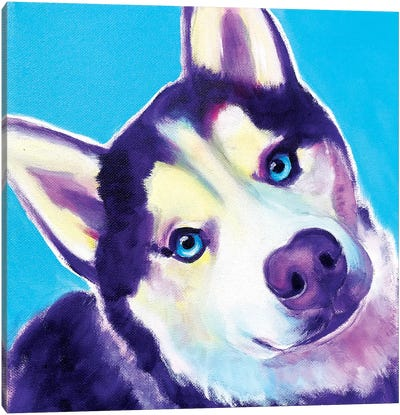 Dico The Husky Canvas Art Print