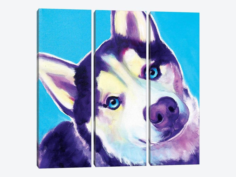 Dico The Husky by DawgArt 3-piece Canvas Art