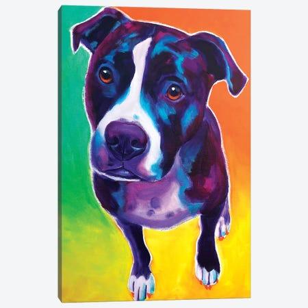 Truman The Pit Bull Canvas Print #DWG217} by DawgArt Canvas Wall Art