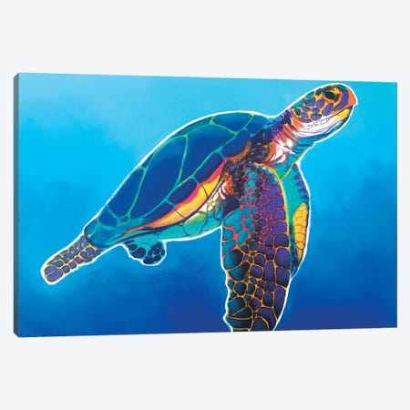 Rainbow Sea Turtle Canvas Print #DWG218} by DawgArt Canvas Art Print
