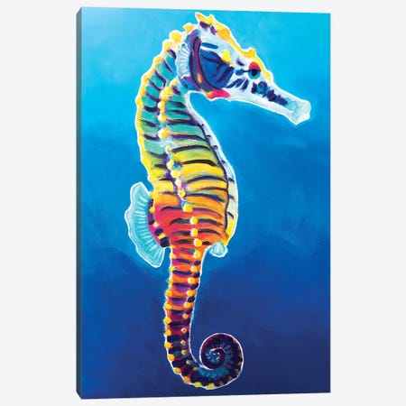 Rainbow Seahorse Canvas Print #DWG219} by DawgArt Canvas Art Print