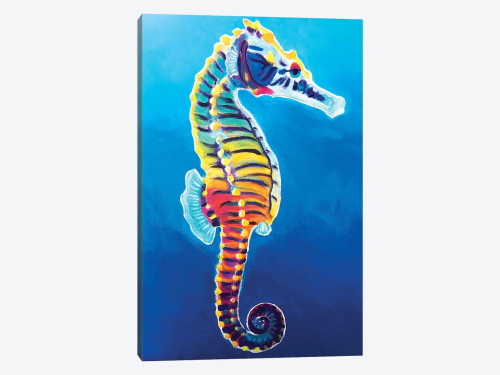 Rainbow Seahorse by DawgArt 1-piece Canvas Art