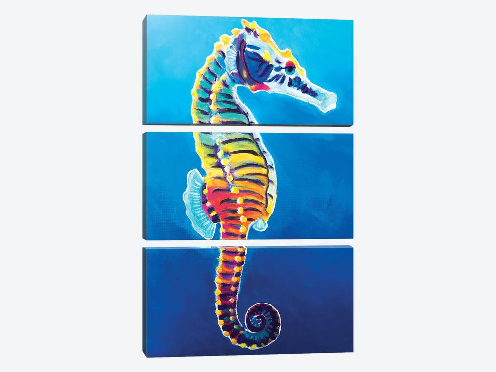 Rainbow Seahorse by DawgArt 3-piece Canvas Artwork
