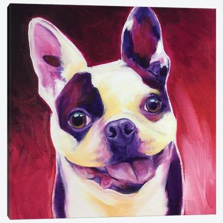 Boston Terrier - Abigail Canvas Print #DWG224} by DawgArt Canvas Art Print