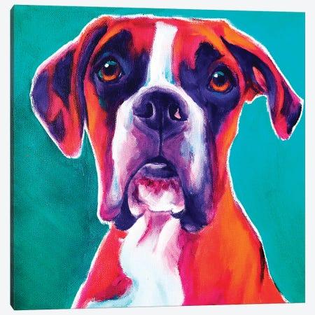 Boxer - Brahma Canvas Print #DWG225} by DawgArt Canvas Print
