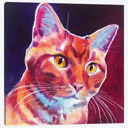 Cat - Linus Canvas Print #DWG226} by DawgArt Canvas Art Print