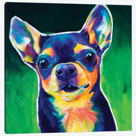 Chihuahua - Jack Canvas Print #DWG228} by DawgArt Canvas Wall Art