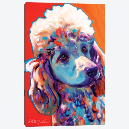 Bonnie The Poodle Canvas Print #DWG22} by DawgArt Canvas Artwork