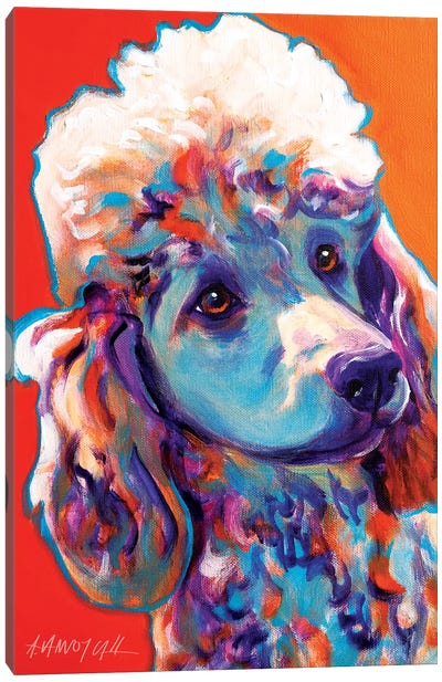 Bonnie The Poodle Canvas Art Print