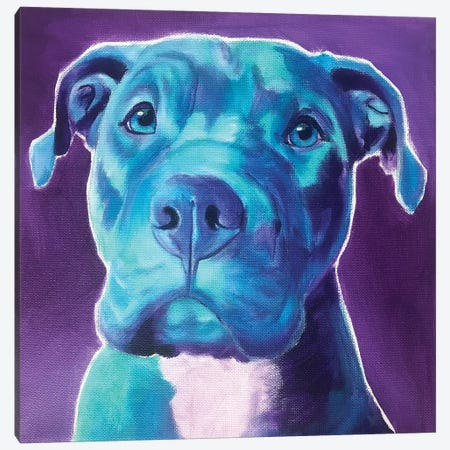 Pit Bull - Durango Canvas Print #DWG232} by DawgArt Canvas Print