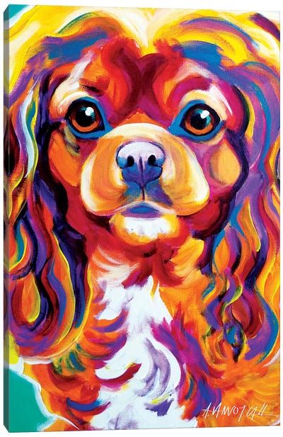 Boonda The King Charles Spaniel Canvas Art Print