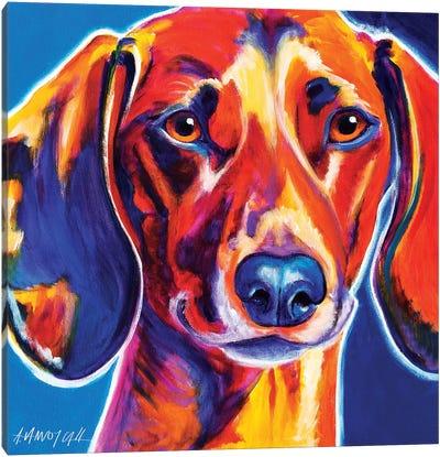 Bubbs The Dachshund Canvas Print #DWG28