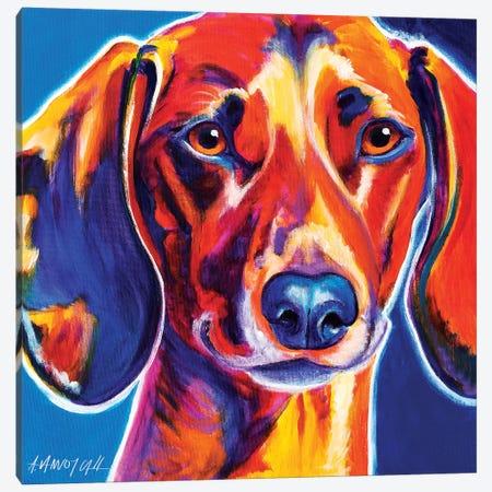 Bubbs The Dachshund Canvas Print #DWG28} by DawgArt Canvas Artwork
