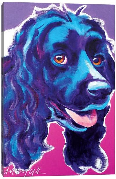 Cocker Spaniel Dixie Canvas Art Print