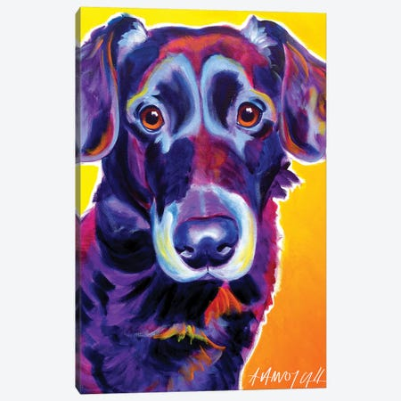 Cole The Labrador Canvas Print #DWG39} by DawgArt Art Print
