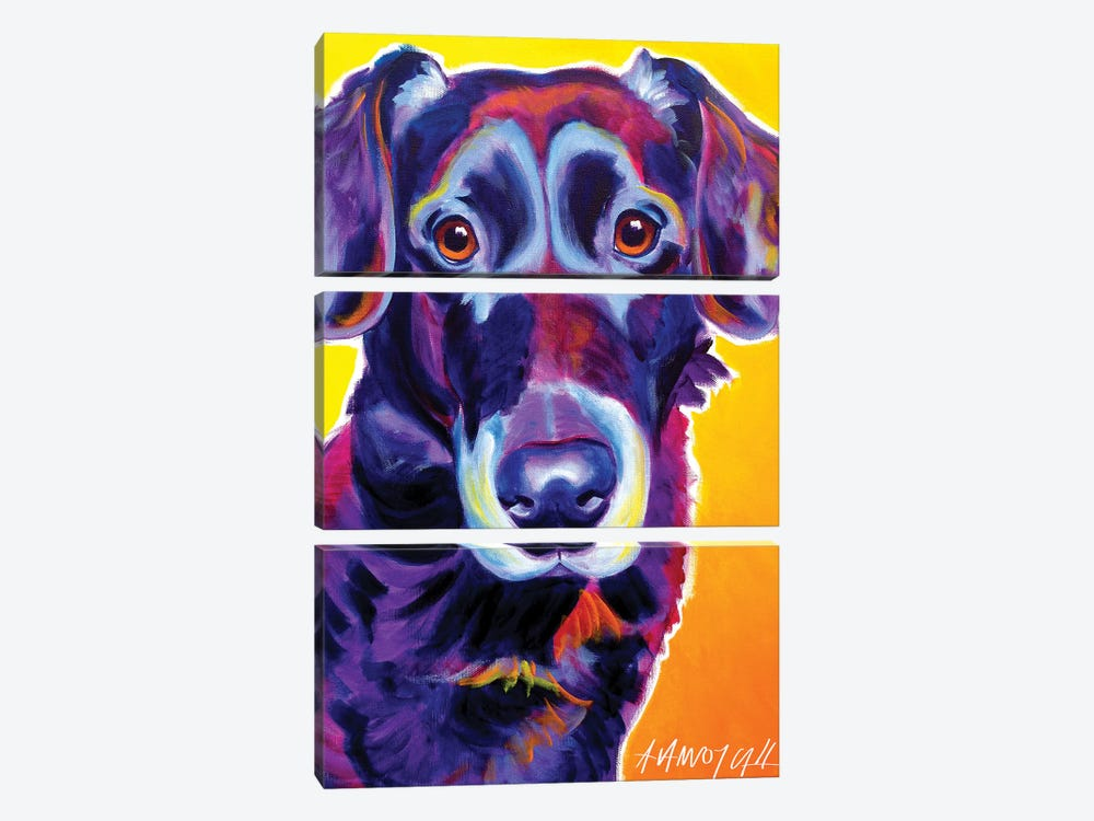 Cole The Labrador by DawgArt 3-piece Canvas Art