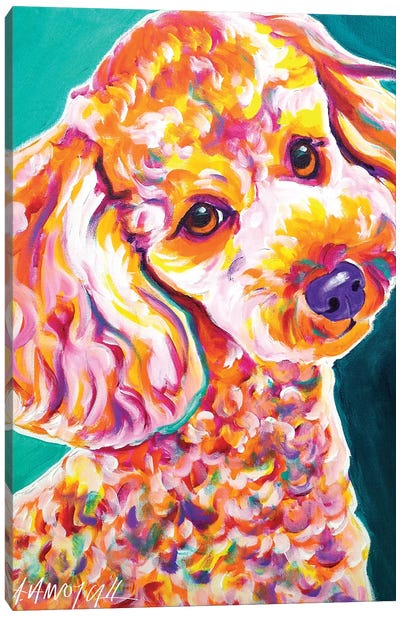 Curly The Poodle Canvas Art Print
