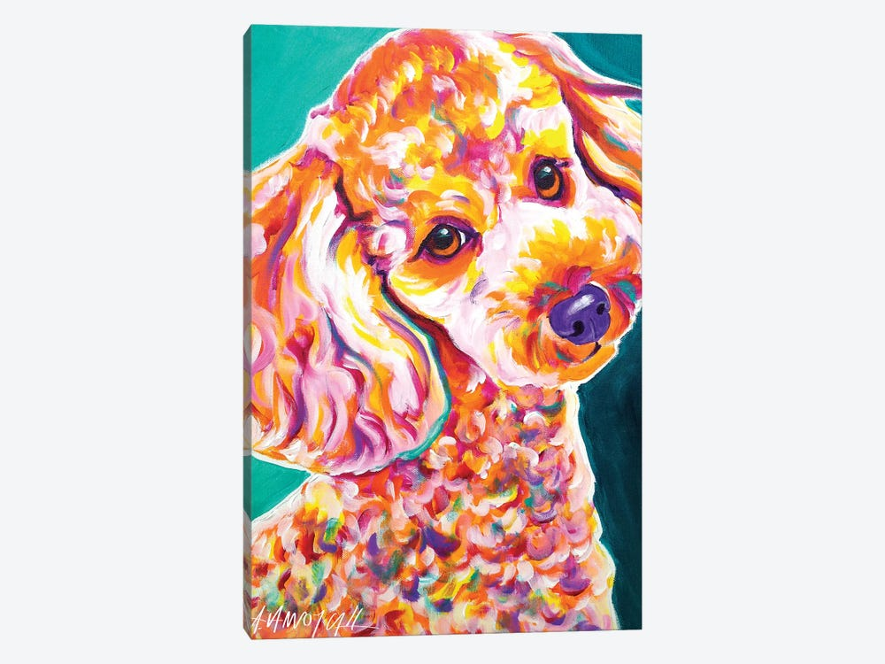 Curly The Poodle by DawgArt 1-piece Canvas Wall Art