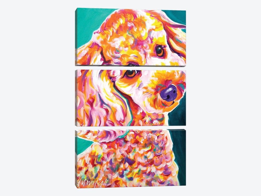 Curly The Poodle by DawgArt 3-piece Canvas Wall Art