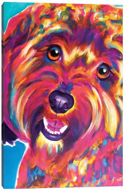 Daisy The Cavapoo Canvas Art Print