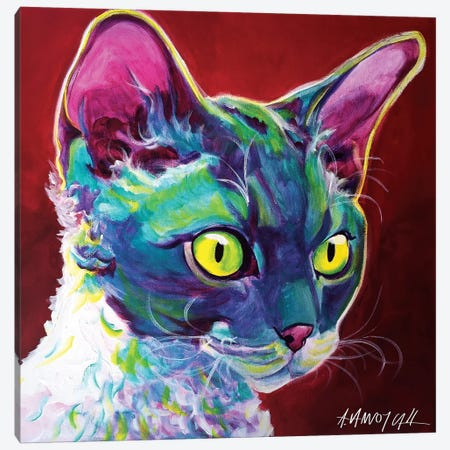 Devon Rex Canvas Print #DWG47} by DawgArt Canvas Art Print