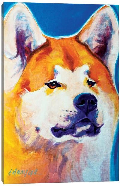 Apricot The Akita Canvas Print #DWG4