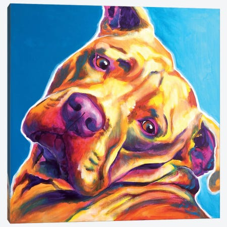 Dozer The Pit Bull Canvas Print #DWG50} by DawgArt Canvas Print