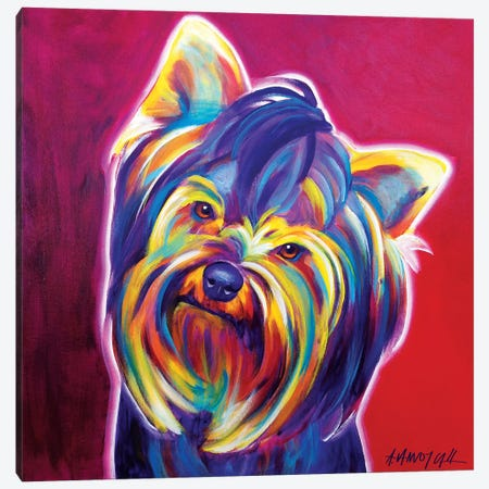 Furbie Face The Yorkie Canvas Print #DWG58} by DawgArt Canvas Art Print