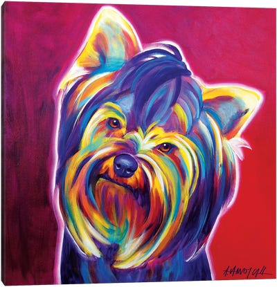 Furbie Face The Yorkie Canvas Art Print