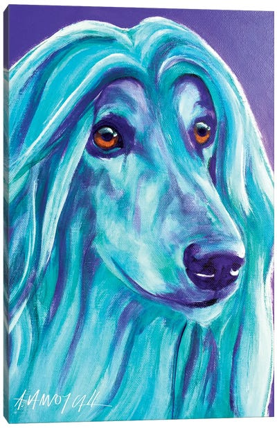 Aqua The Afghan Hound Canvas Art Print