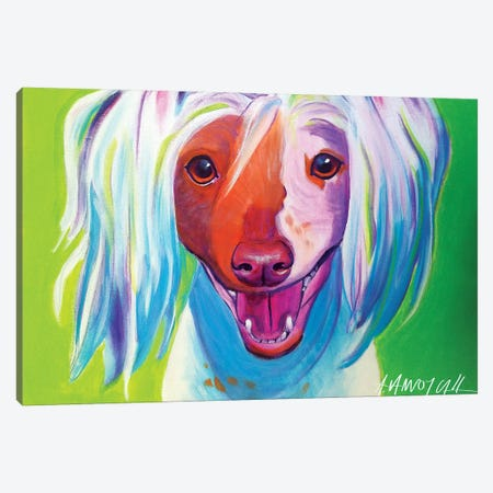 Grin The Chinese Crested Canvas Print #DWG62} by DawgArt Canvas Artwork
