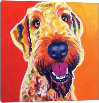 Hank The Airedoodle Canvas Art Print