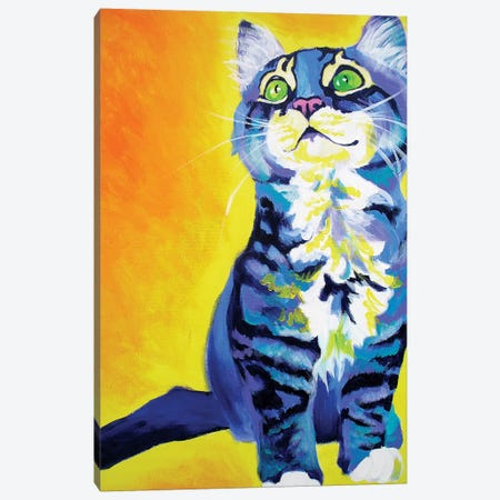 Here Kitty Kitty Canvas Print #DWG69} by DawgArt Canvas Wall Art