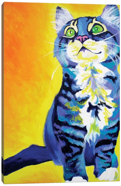 Here Kitty Kitty Canvas Art Print