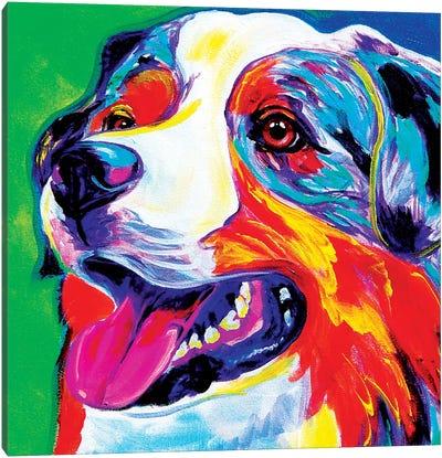 Aussie Canvas Print #DWG6