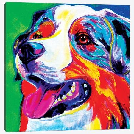 Aussie Canvas Print #DWG6} by DawgArt Art Print