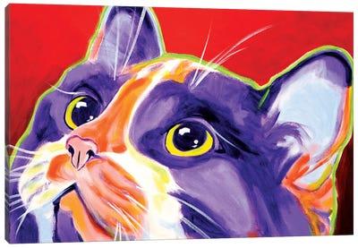 Issa Canvas Art Print